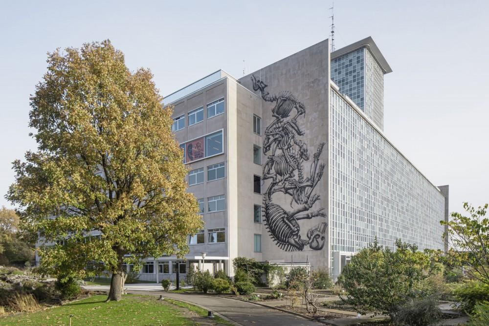 Abscis Architecten - kunstenaar ROA op de gevel van het nieuwe GUM - foto Jeroen Verrecht
